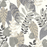 RY30908 gray tropicana leaves botanical wallpaper from the Boho Rhapsody collection by Seabrook Designs