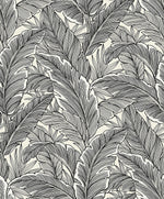 UK10005 palm leaf botanical wallpaper from the Black and White collection by Etten Gallerie