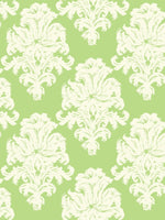 TA20104 montserrat damask wallpaper from the Tortuga collection by Seabrook Designs