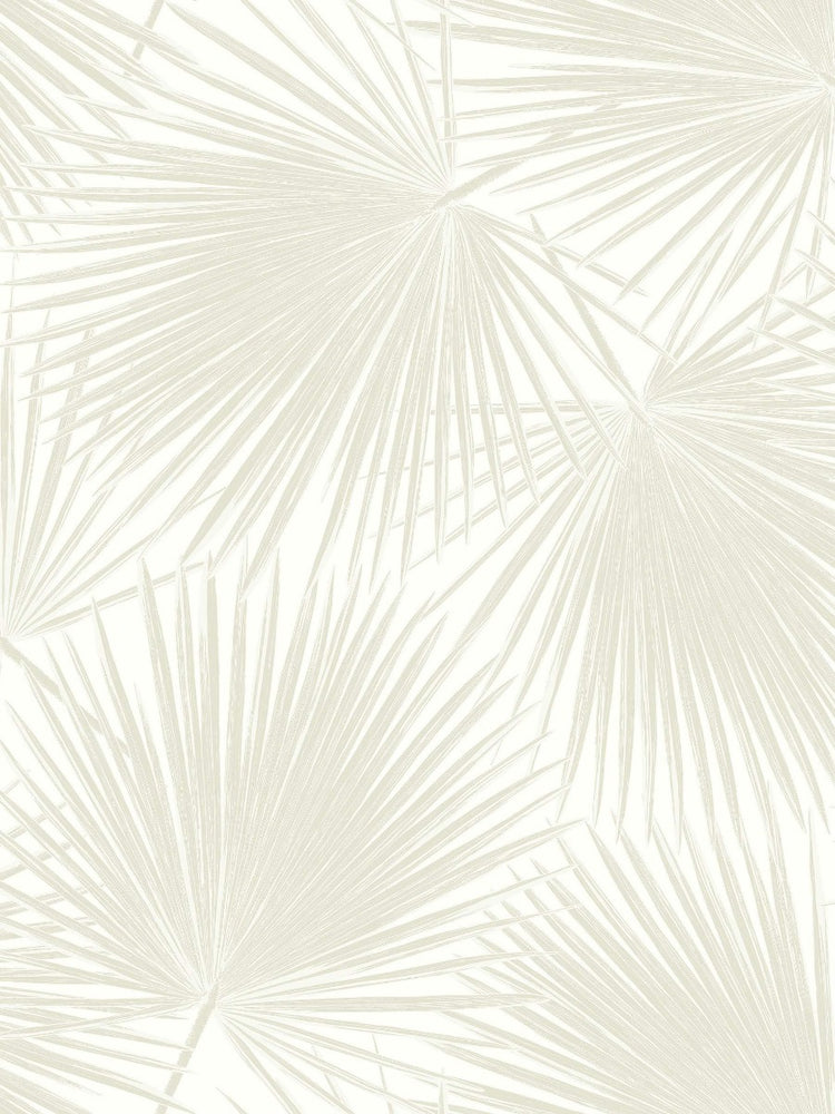 TA20210 aruba palm leaf tropical wallpaper from the Tortuga collection by Seabrook Designs