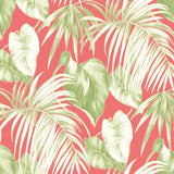 TA21601 dominica tropical leaf wallpaper from the Tortuga collection by Seabrook Designs