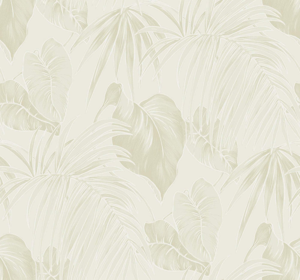 TA21605 dominica tropical leaf wallpaper from the Tortuga collection by Seabrook Designs