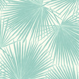 TA20202 aruba palm leaf tropical wallpaper from the Tortuga collection by Seabrook Designs