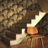 AV50900 Galileo abstract map wallpaper stairs from the Avant Garde collection by Seabrook Designs