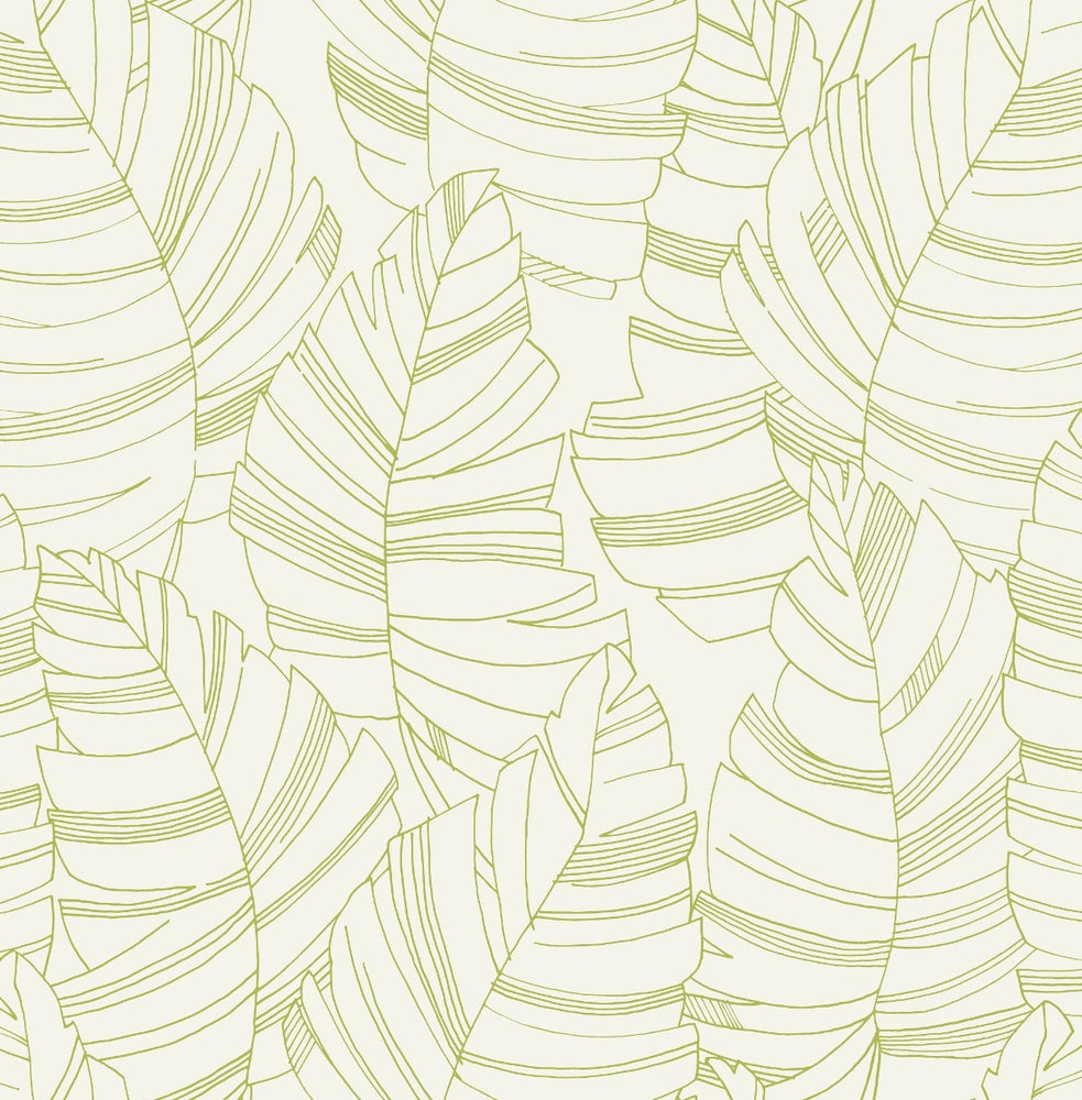 DA61404 jungle leaves botanical wallpaper from the Day Dreamers collection by Seabrook Designs