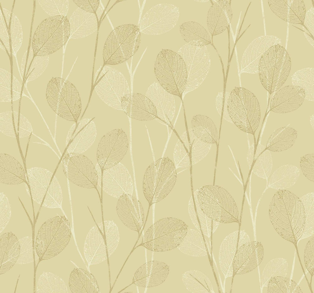 EC50208 leaf skeleton botanical wallpaper from the Eco Chic II collection by Seabrook Designs