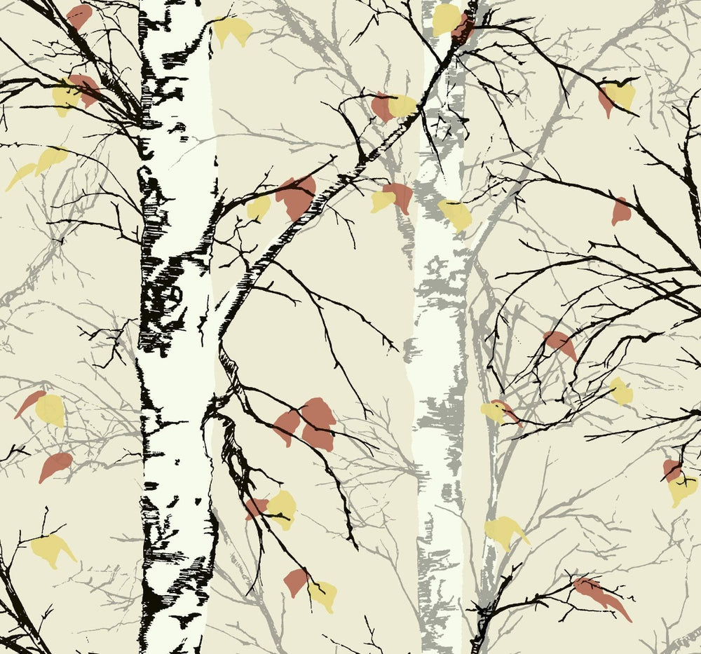 EC52206 birch tree botanical wallpaper from the Eco Chic II collection by Seabrook Designs