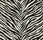 EC51200 zebra stripes animal print wallpaper from the Eco Chic 2 collection by Seabrook Designs