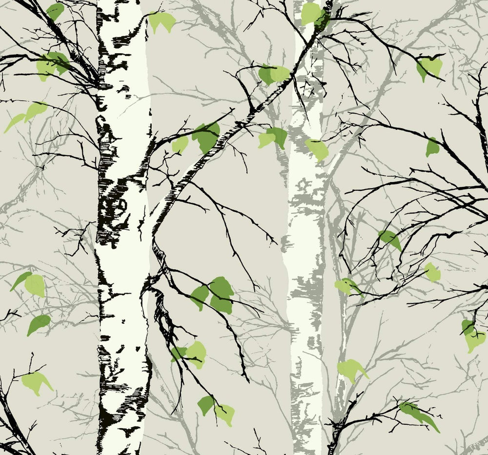 EC52202 birch tree botanical wallpaper from the Eco Chic II collection by Seabrook Designs