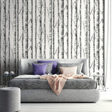black and white birch tree wallpaper contemporary bedroom