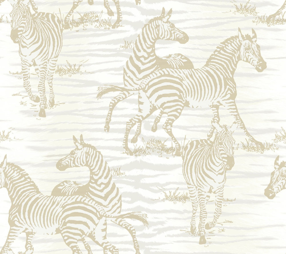CR20505 jarvis zebra animal wallpaper from the Island collection by Carl Robinson