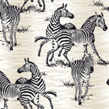 CR20500 jarvis zebra animal wallpaper from the Island collection by Carl Robinson