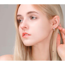 Load image into Gallery viewer, Malani Crystal Long Earrings with 14K Rose Gold Pin