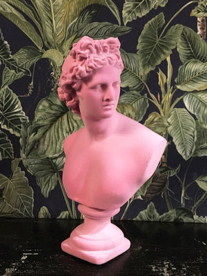Fabulous Flocked Apollo Bust - Pink