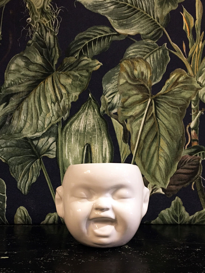 Baby Face mini Pot / Planter White - laugh