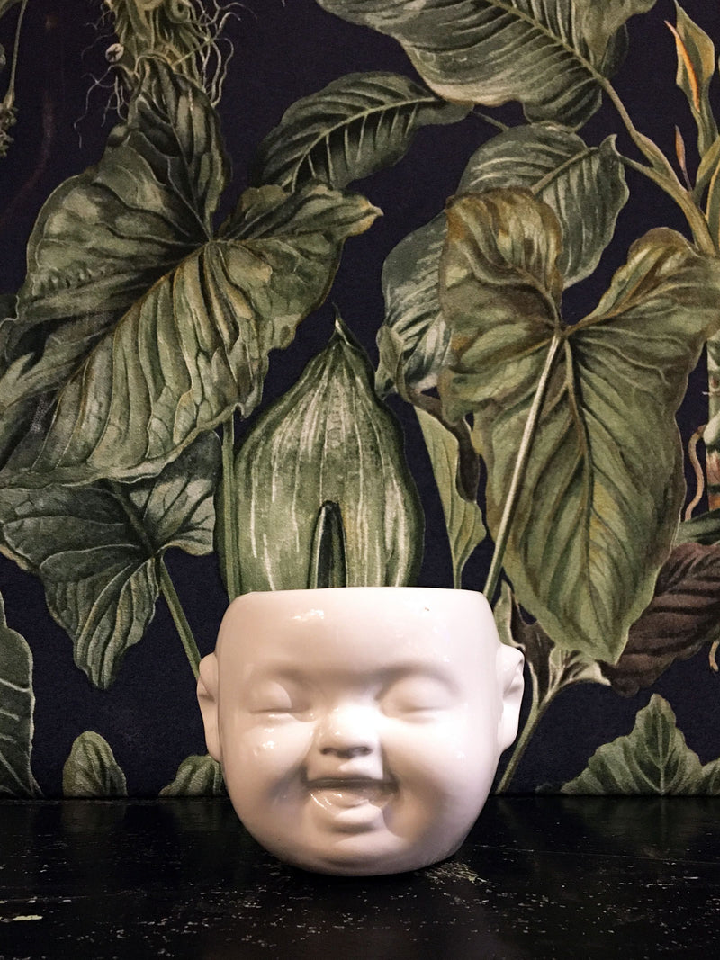 Baby Face mini Pot / Planter White - giggle