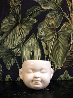 Baby Face mini Pot / Planter White - smile