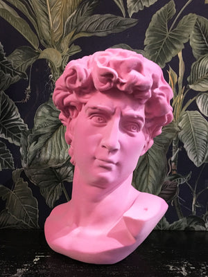 Fabulous Flocked David Bust - Pink