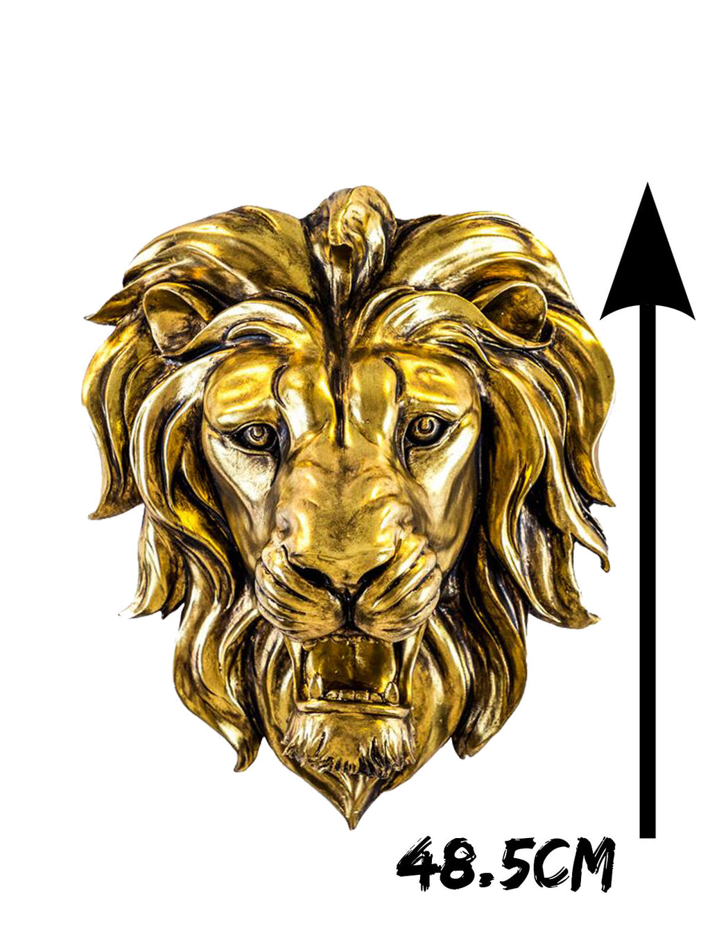 Lazzaro Lion Wall Decoration