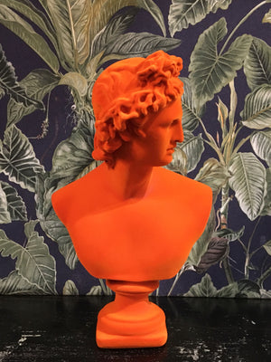 Fabulous Flocked Apollo Bust - Orange