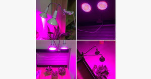 LED Plant Growth Light – Your Sunlight for Your Plants