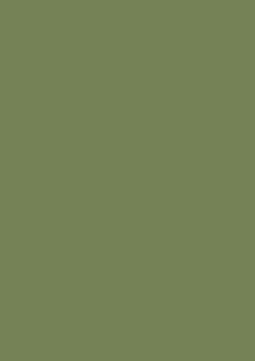 Sap Green No. W56