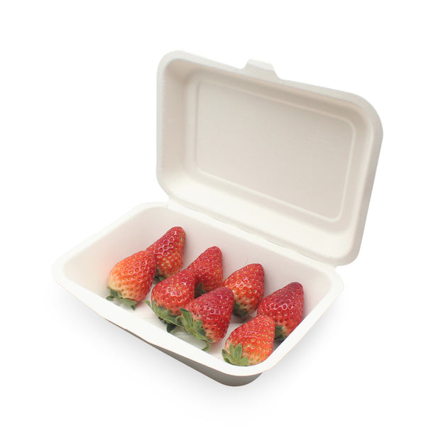 100% Biodegradable Sugarcane Bagasse 7x5inch Lunch Box