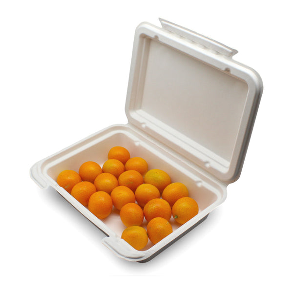 9x6inch Disposable Sugarcane Bagasse Lunch Box