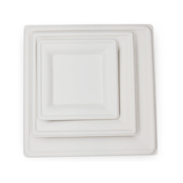 Square Plate 6inch