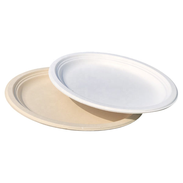 Eco-friendly Sugarcane Bagasse Oval Plate 12inch