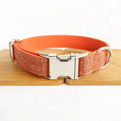 Orange Personalized pets Collar
