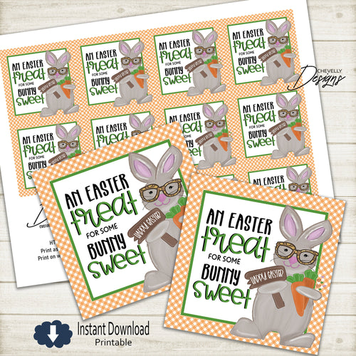 Easter Bunny Treat Gift Tags | Printable - Instant Digital File