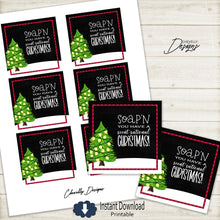 Load image into Gallery viewer, Printable Soap'n You Have a Scent-sational Christmas Gift Tags >>>Instant Digital Download<<<
