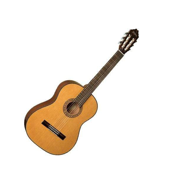 Washburn Guitars Acoustic Guitar Washburn C40USM Classical Series Acoustic Guitar