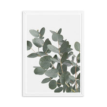 Load image into Gallery viewer, Eucalyptus Canvas Painting