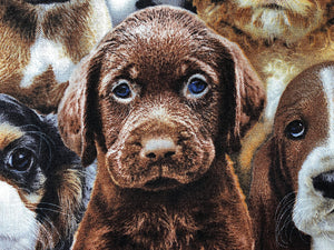 Close up of a dogs on cotton fabric.