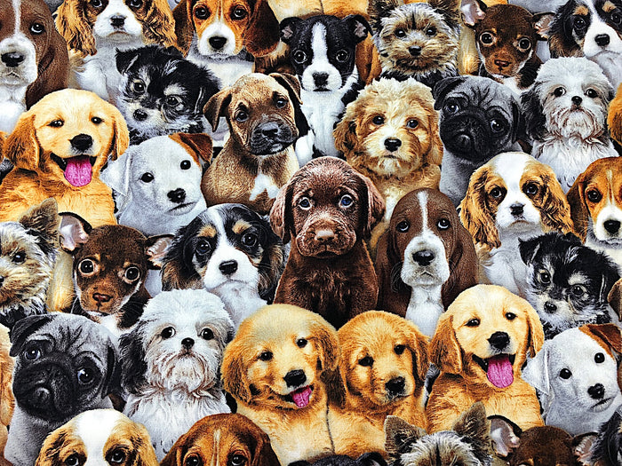 Adorable Dog Fabric - DOG-06