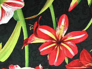 Close up of Amaryllis and leaves on black fabric