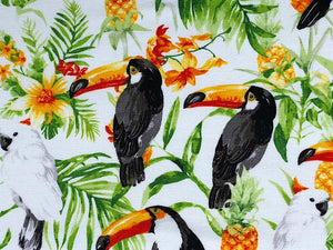 Close up of the Toucans and Parrots
