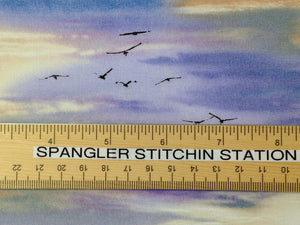 Ruler on cotton sky and bird fabric.