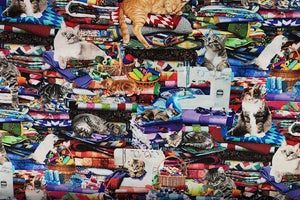Cotton fabric covered with cats sitting on quilts and by sewing machines.