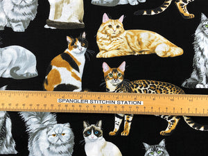 Ruler on fabric showing the size of the cats.