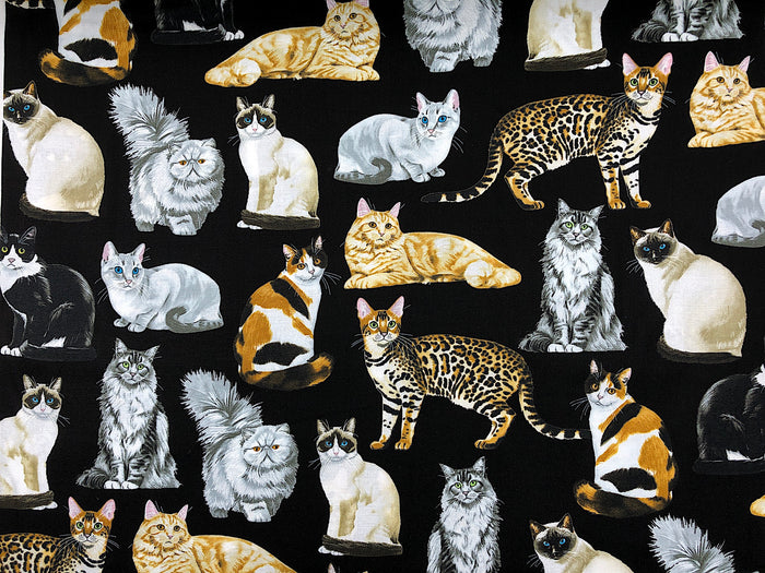 Realistic Cat Fabric - CAT-66