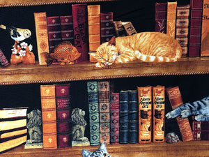 Close up of a cat sleeping in the bookshelf in front of some books.