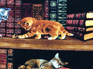 Close up of a cat playing on the bookshelf.