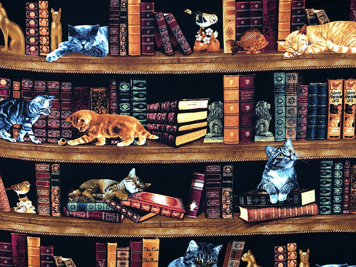 Cats in Library - CAT-70