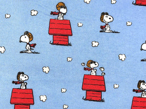 Close up of blue fabric covered with Snoopy as Red Baron.