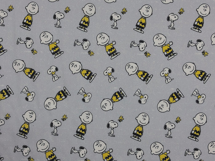 Snoopy and Charlie Brown Fabric - C-46