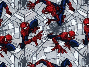 Close up of spider man crawling through webs.