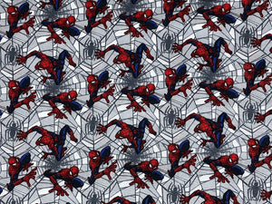 Spider Man crawling through webs.